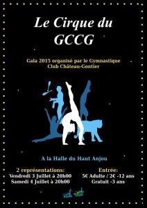 affiche du gala 2015
